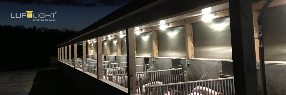 Permalink auf:Elkom – Lufolight LED